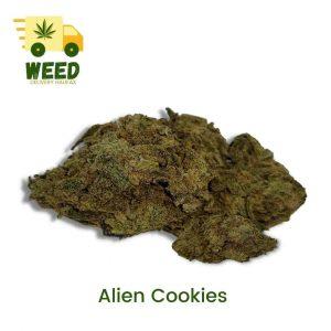 Alien Cookies
