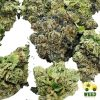 Ounce 99oz - Weed Delivery Halifax - WDH