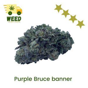 Purple Bruce Banner