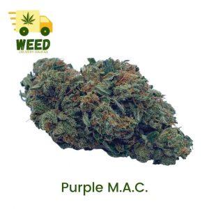 Purple M.A.C